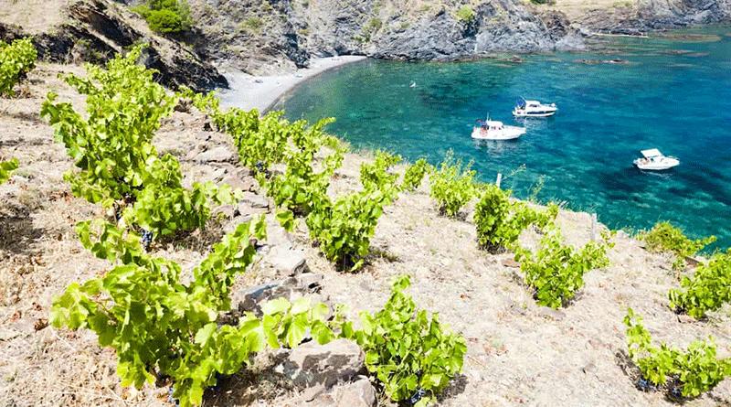 Languedoc Và Roussillon