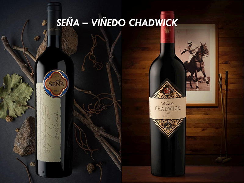 Sena Vinedo Chadwick