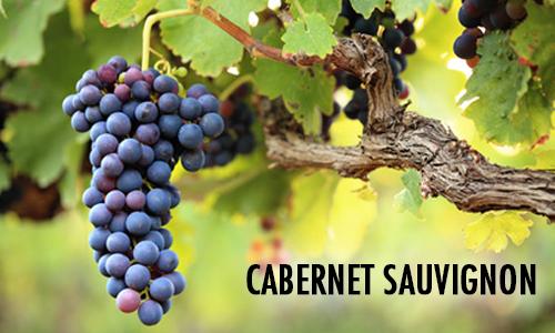 20180612 Cabernet Sauvignon
