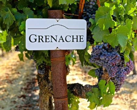 Grenache Vinemettler
