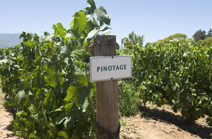 Pinotage South Africa 700x461